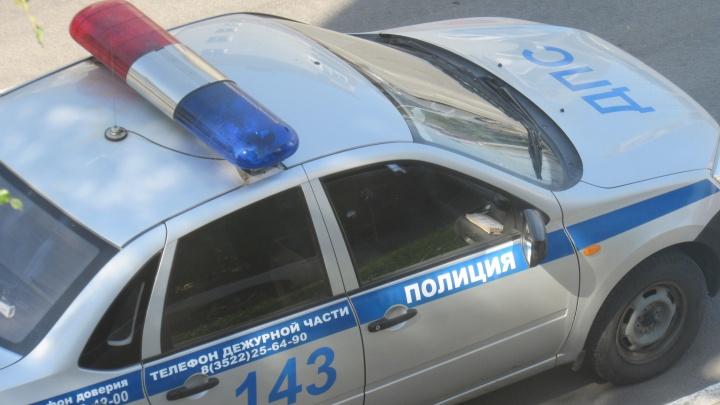 В Каргапольском районе нетрезвый водитель покусал сотрудника ДПС