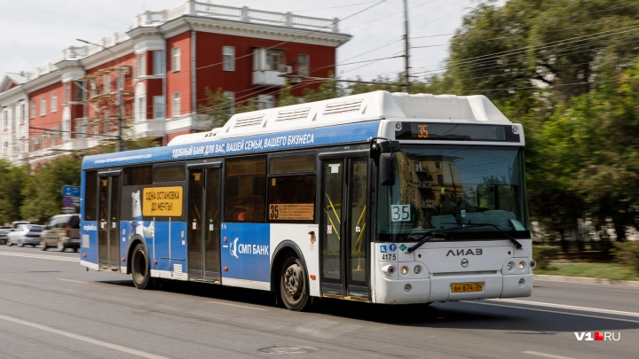 Бьются каждые два дня: водители автобусов в Волгоградской области устроили 83 ДТП с начала года