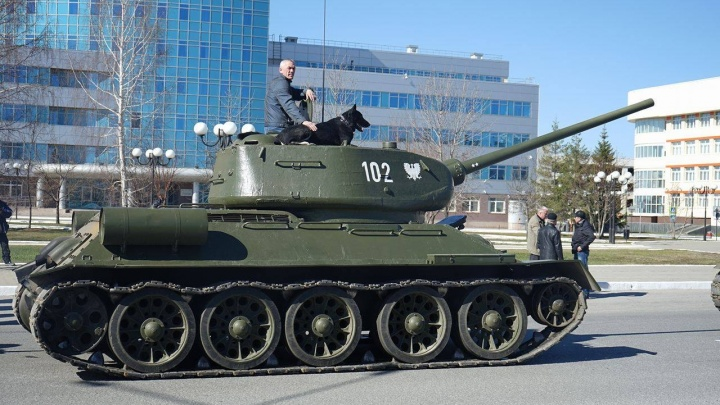 В танке и с собакой: в Верхней Пышме прошла репетиция парада Победы