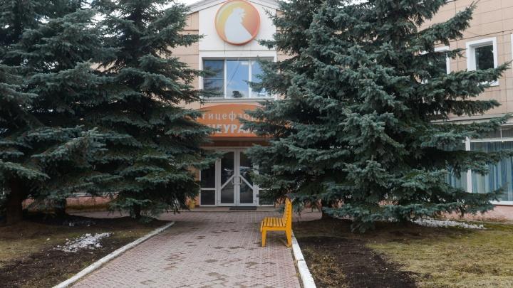 «В первую очередь надо решить экологический вопрос»: репортаж со Среднеуральской птицефабрики