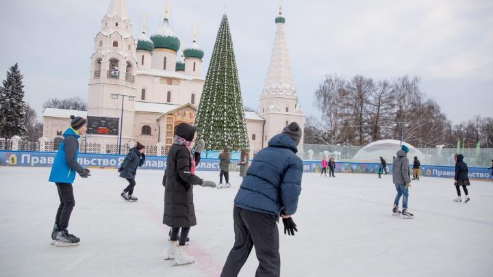 Ярославцев зовут на снежный волейбол и массовое катание на коньках: где сегодня развлечься в городе