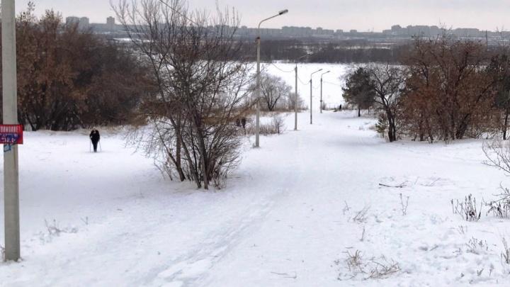 Родственники разбившейся в Советском парке омички решили получить компенсацию морального вреда