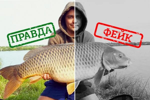 Иногда отличить настоящую рыбу от фейковой просто нереально