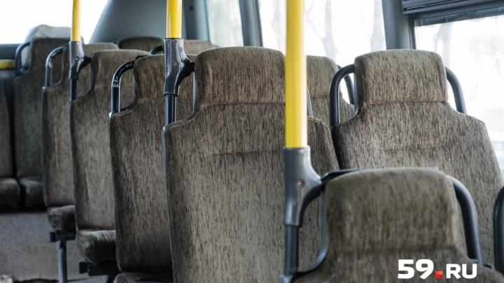 Ждали 16 часов. Туристы, застрявшие под Волгоградом из-за поломки автобуса, едут в Пермь