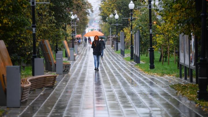 Родители и школьники, мужайтесь: начало осени в Екатеринбурге будет пасмурным и дождливым
