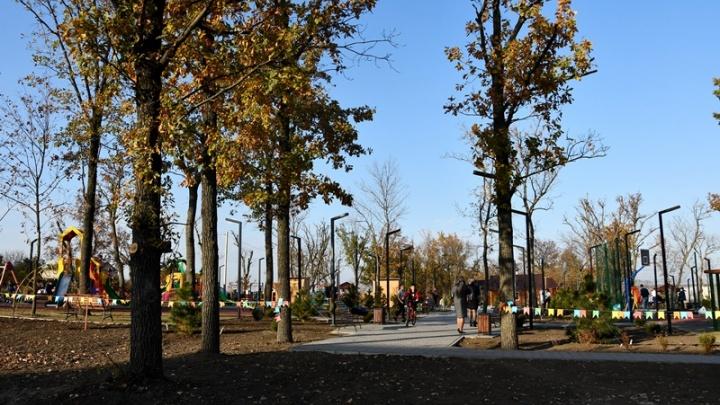 В станице Мишкинской открылся парк в форме медвежьей головы