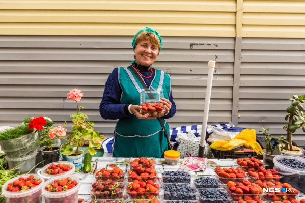 В Новосибирске начался сезон садовой клубники