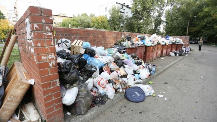 «Приносим искренние извинения»: в Челябинск экстренно пригнали дополнительные мусоровозы