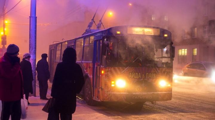 Общественники объявили о срыве поставки новых троллейбусов в Красноярск