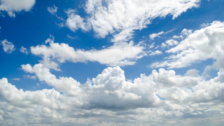 Резкое усиление ветра прогнозируют в Ростове в ближайшие часы
