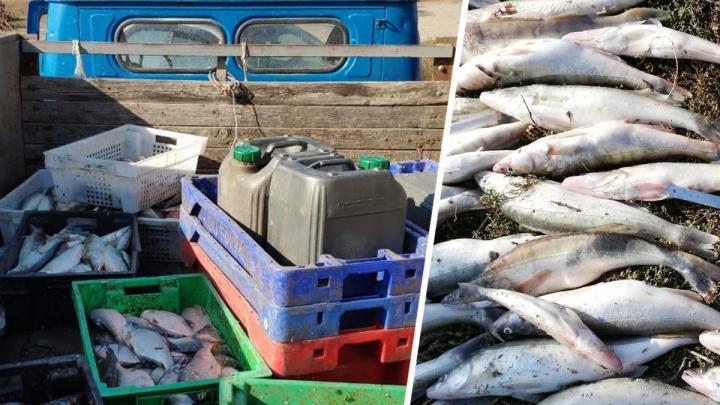Рыбалка не удалась: под Таганрогом задержали браконьеров с уловом на 500 000 рублей