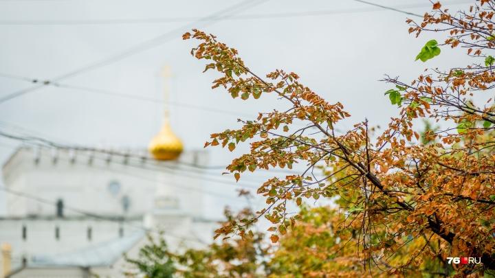 «Кидает из тепла в холод»: синоптики рассказали, что будет с погодой в центре России в ближайшие дни