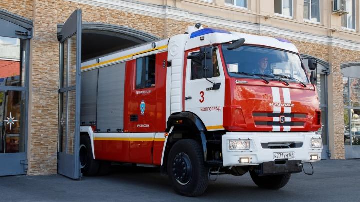 Можно в лес на шашлыки: в Волгоградской области сняли особый противопожарный режим