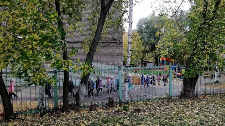 В Перми три девочки попробовали грибы на территории детского сада и попали в больницу
