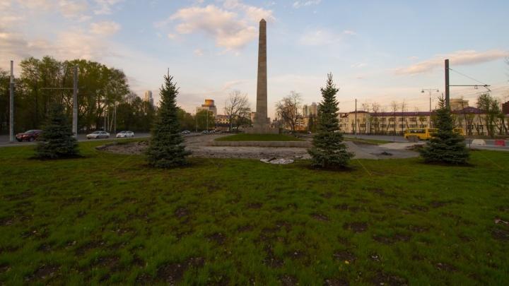 Вокруг Вечного огня высадили ёлочки вместо вырубленного парка