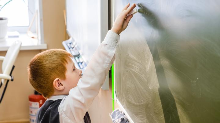 Упор на естественно-научные направления и информационные технологии: что ждет школы к 2021 году