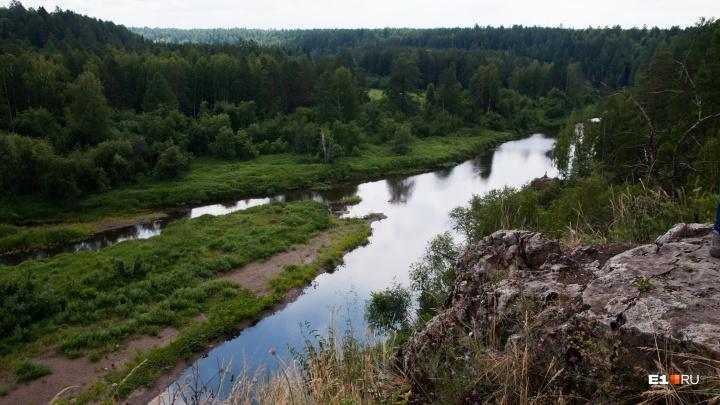В «Оленьих ручьях» закрыли палаточный лагерь, где дети мылись в реке и ели майонез