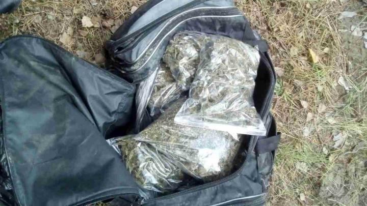 Житель Тюменской области спрятал пакеты с наркотиками в зауральском лесу