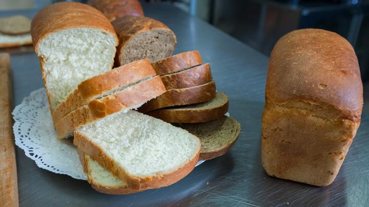 Допекли производителей? В России начал дорожать хлеб, ждать ли рост цен в Челябинске