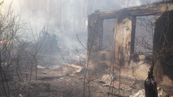 Ищут, кто начал: пожар, спаливший в Челябинской области 23 садовых участка, вылился в уголовное дело