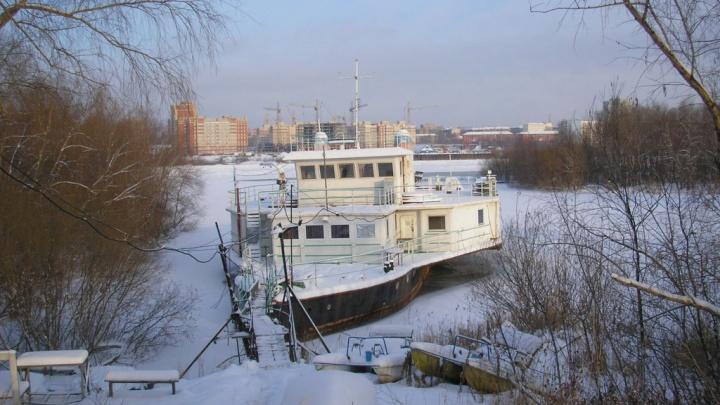 В Омске выставили на продажу «плавучий дом» с двумя саунами, мангальной зоной и теплицей