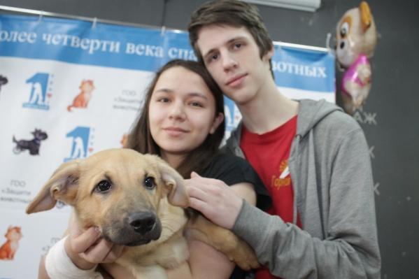 Пёс Персик и его новая семья