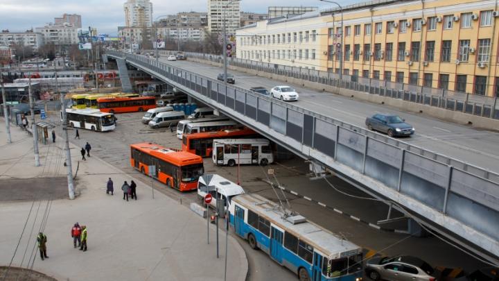Для таких штрафов только банкноты «Банка приколов»: волгоградцы — о знаках скорости на Комсомольском мосту