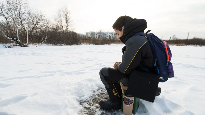 В поисках лох-несского чудовища и зимней романтики: что водится в городских водоемах