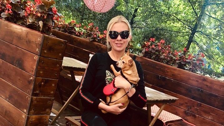 «Украли для разведения»: у челябинки выманили крупную сумму, пообещав вернуть ей пропавшую собаку