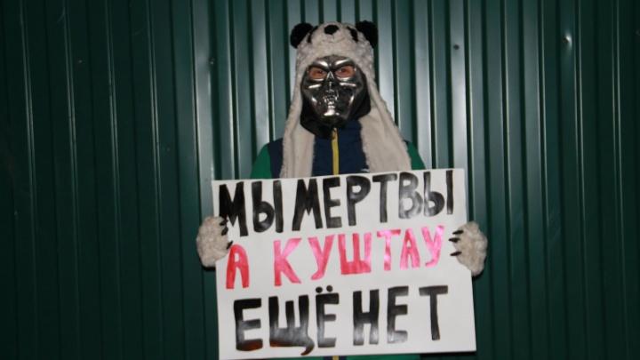 Партия мертвых заступилась за башкирский шихан Куштау и дельфинов