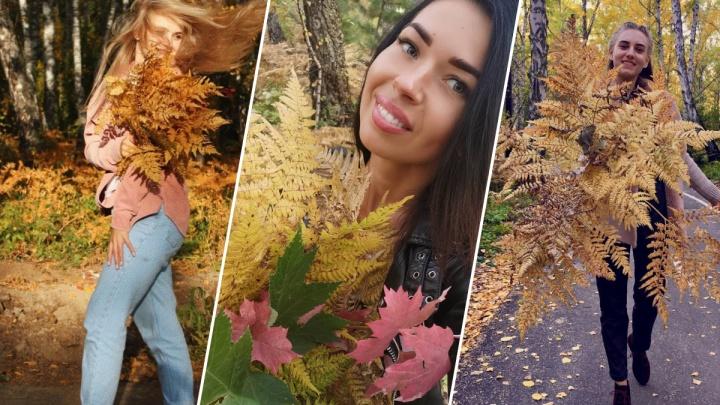 Краски осени: красноярцы собирают на «Гремячей гриве» осенние букеты