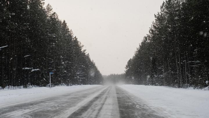 В Краснокамске на трассе погибла пассажирка Renault Duster