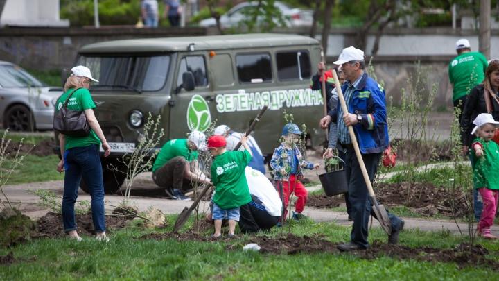 Зелёная дружина СГК открывает новый сезон озеленения Красноярска