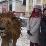 Глобальное потепление: как с помощью «Гугла» прогуляться по Архангельску с аллигатором и пандой