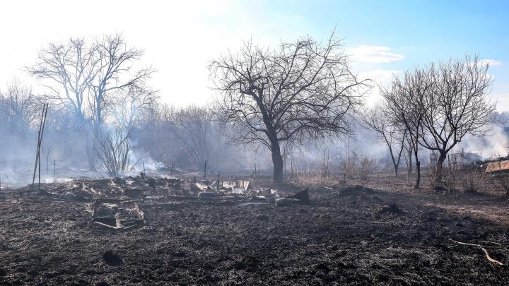 «Страшно стало, вдруг наш участок зацепило». Фоторепортаж с масштабного пожара под Нижним Новгородом