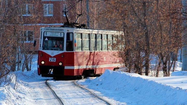 «Трамваям и троллейбусам уделяется неоправданно мало внимания»: омич — о плюсах электротранспорта
