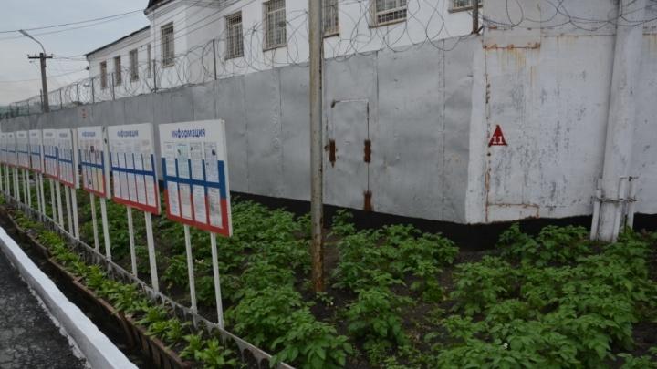 100 заключённых в Зауралье могут выйти на свободу после изменений в законе