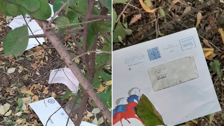 В «Почте России»заявили, что их почтальоны не выбрасывали квитанции в кусты на Телевизионке