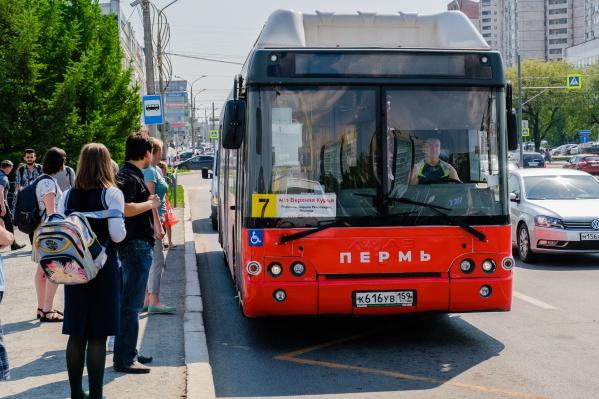 В расписании некоторых автобусов увеличат количество рейсов