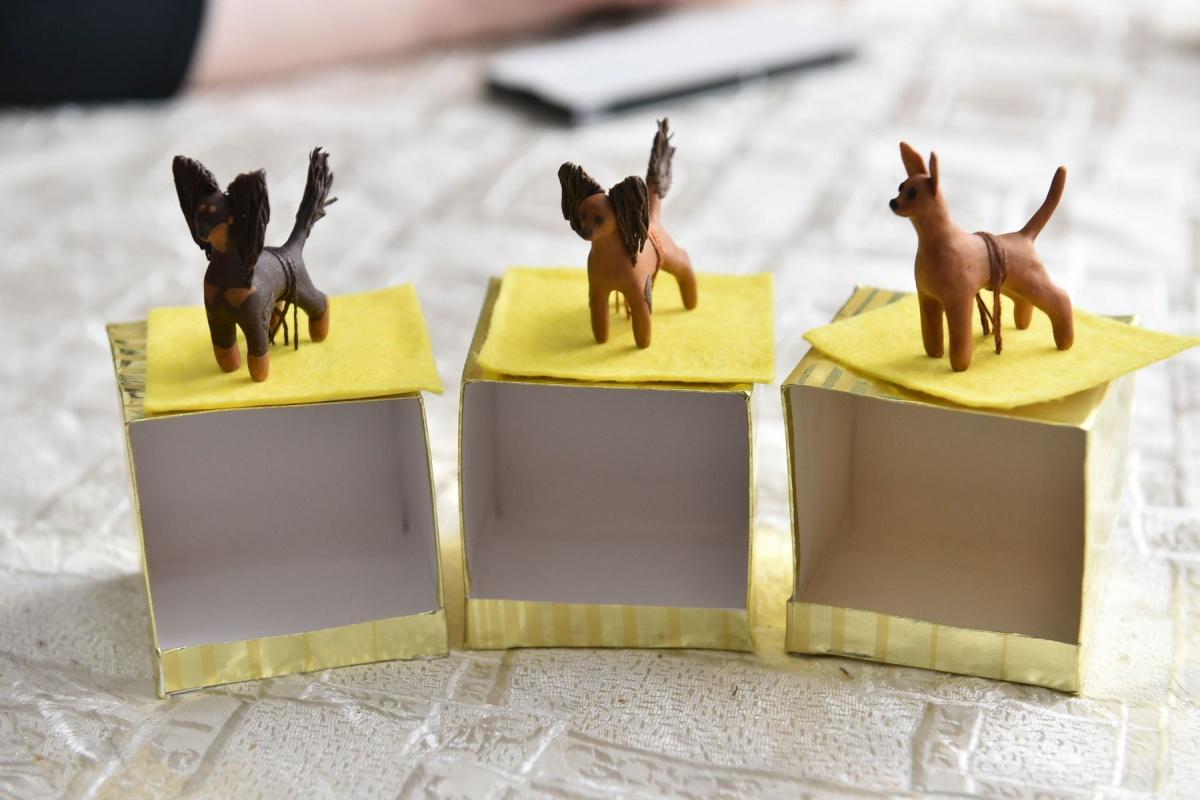 Для развития мелкой моторики Юлия делает фигурки в виде собак из пластики. «Это не раскрученная порода, поэтому статуэток русских тоев мало. Меня часто просят сделать их на заказ», — рассказывает заводчик