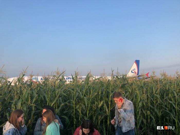 Самолет экстренно сел в поле