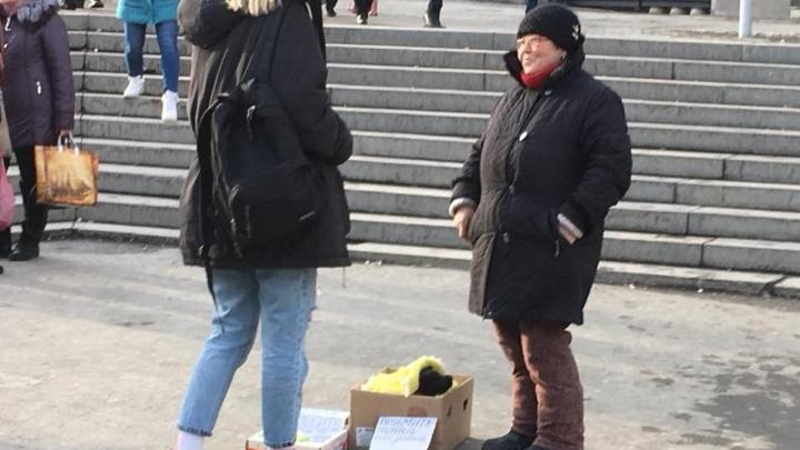 В Екатеринбурге подрались зоозащитница и пенсионерка, которая собирает деньги на больных собак