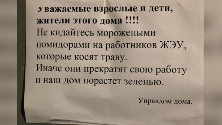 Ярославцы закидали коммунальщиков помидорами. И мороженым