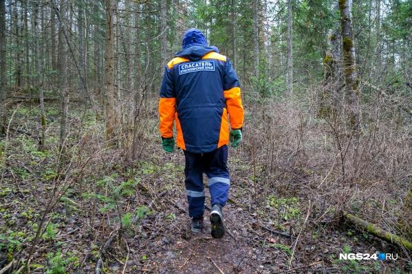 Мальчика в лесу обнаружила поисковая группа