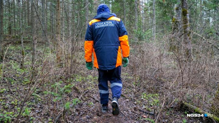Пропавшего в тайге 4-летнего мальчика нашли поисковики