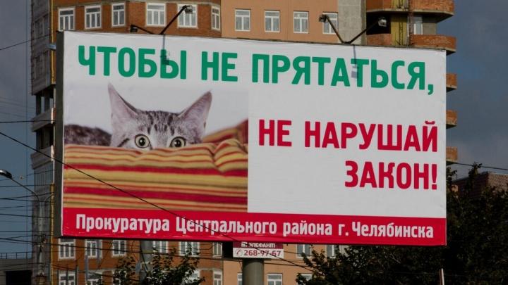 «Котик — для привлечения внимания»: прокуратура удивила челябинцев необычной рекламой