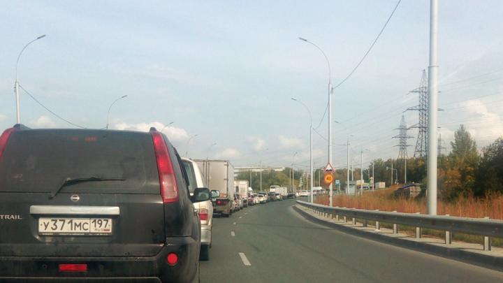 Власти пообещали настроить проблемный светофор на дублёре Богдашки