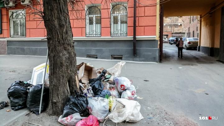В Ростове подали очередную заявку на митинг против мусорной реформы