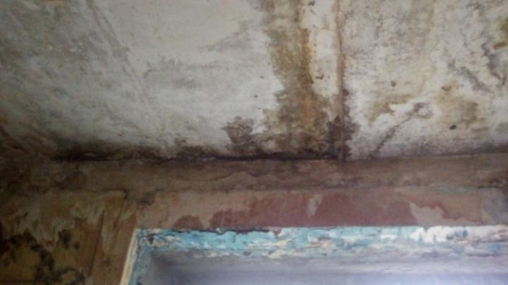 Плесень на стенах и запах сырости: ростовчане опасаются обрушения потолка в доме на Соборном