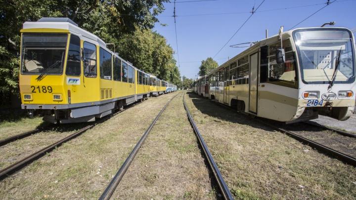 Движение двух популярных маршрутов трамвая закрывают на сутки